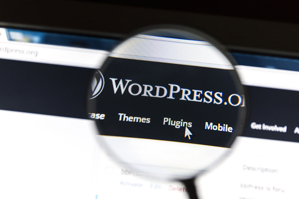 wordpress site